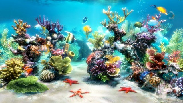 10 Gallon Tank Background Best Of Aquarium Backgrounds to Print Free Printable Background