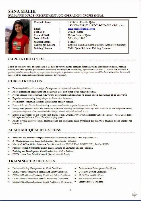 10 Years Experience Resume format Unique Resume Examples