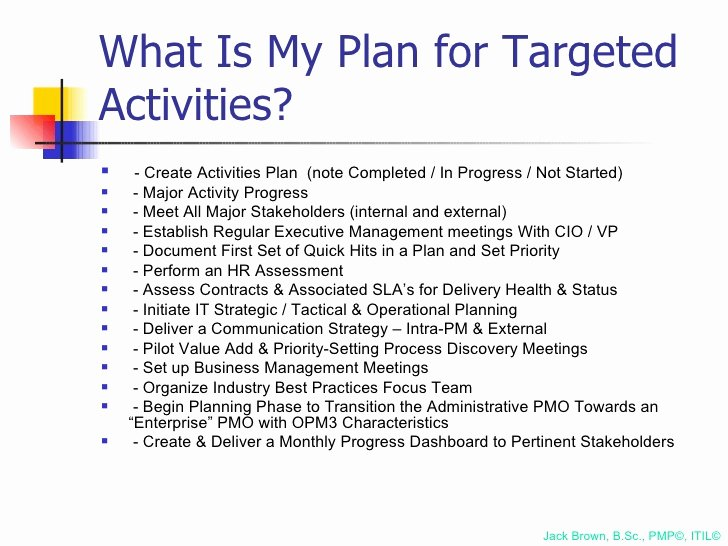 100 Day Plan Example Awesome 100 Day Plan for Directing A Pmo