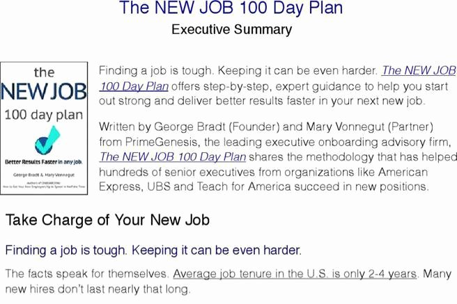 100 Day Plan Example Fresh Sample 100 Day Plan Templates