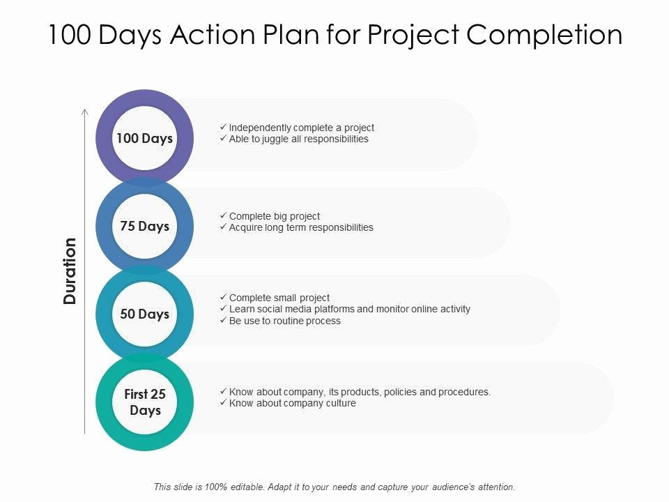 100 Day Plan Example Lovely 100 Days Action Plan for Project Pletion