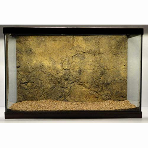 20 Gallon Aquarium Background Best Of 3d Aquarium Background Amazon