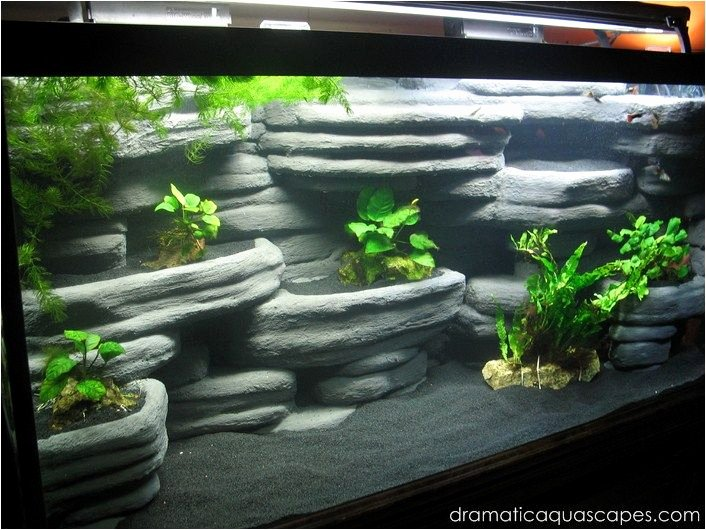 20 Gallon Aquarium Background Best Of Diy Aquarium Background Rock Ledges