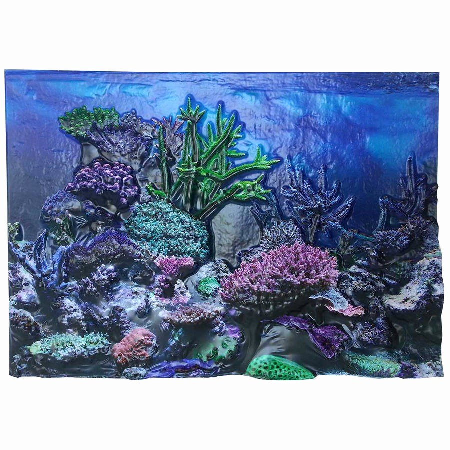 "20 Gallon Aquarium Background Lovely Biobubble 3d Background Coral Reef 20 Gallons 24"" X 12"