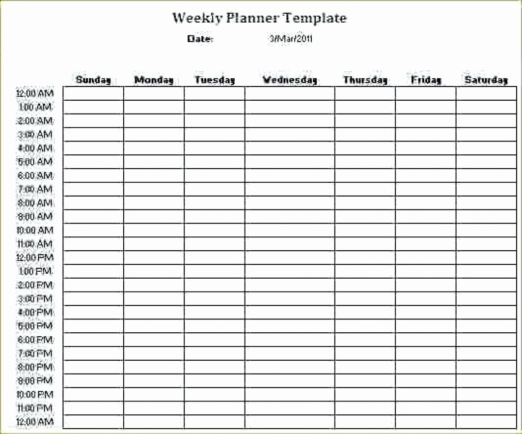 24 7 Schedule Template Beautiful 24 Hour 7 Day A Week Schedule Template
