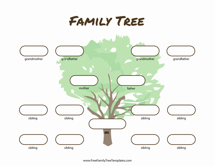 3 Generation Family Tree New 3 Generation Family Tree Many Siblings Template – Free