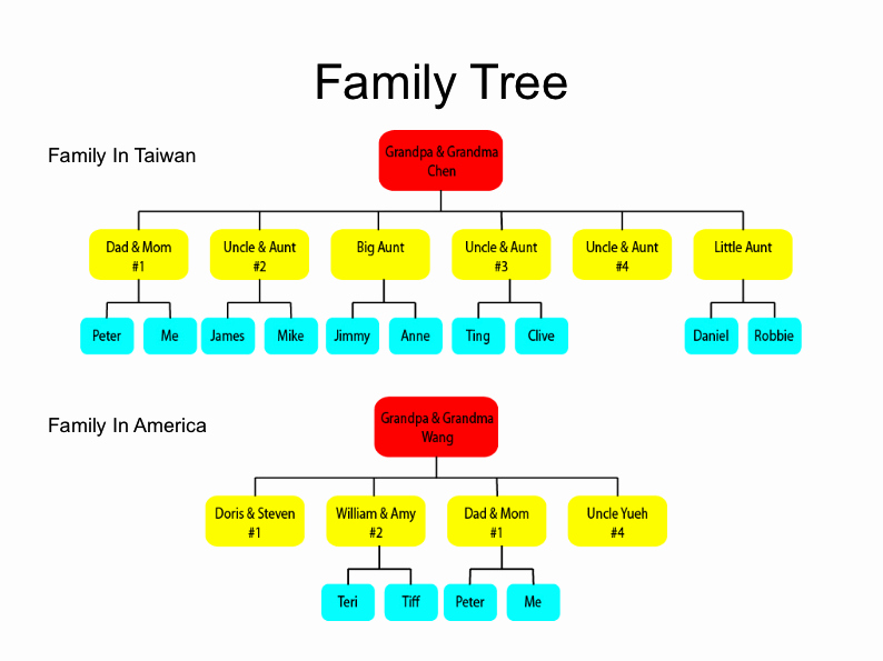 3 Generation Family Tree Unique Free Program Three Generation Family Tree