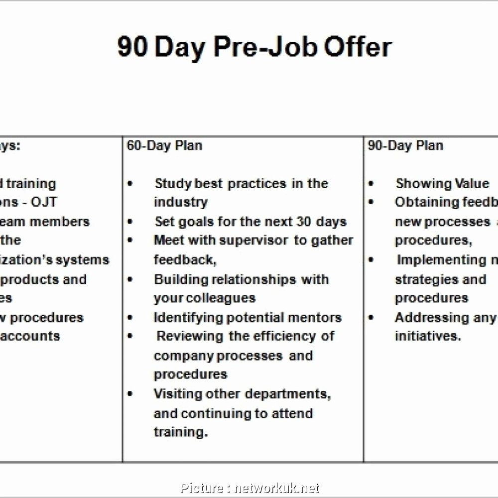 30 60 90 Business Plan Best Of 10 30 60 90 Day Plan Sales Manager Example