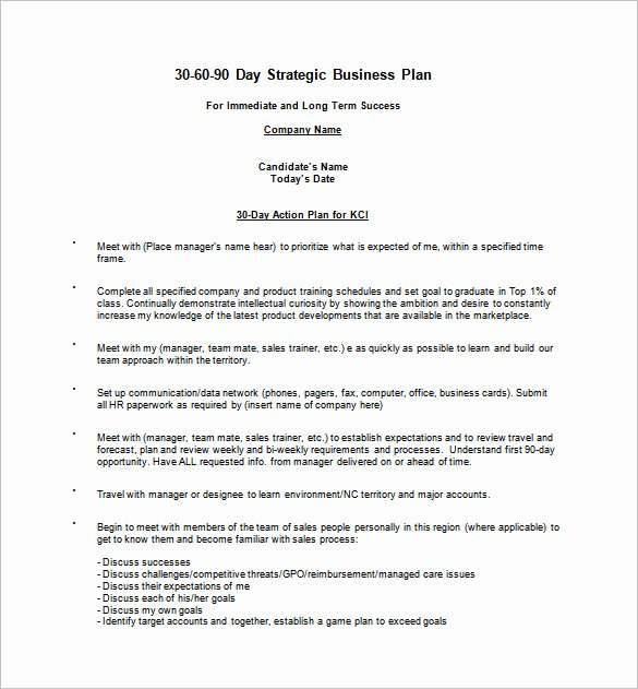 30 60 90 Business Plan Best Of 12 30 60 90 Day Action Plan Templates Doc Pdf