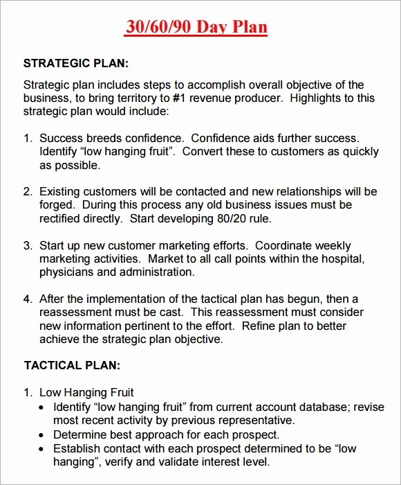 30 60 90 Plan Template Luxury 20 Sample 30 60 90 Day Plan Templates In Google Docs
