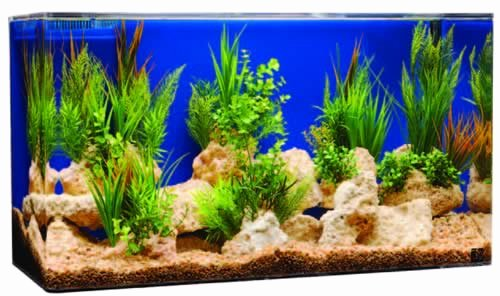 "30 Gallon Fish Tank Background Unique Seaclear System Ii 30 Gallon 36""lx12""wx16""h Rectangular"
