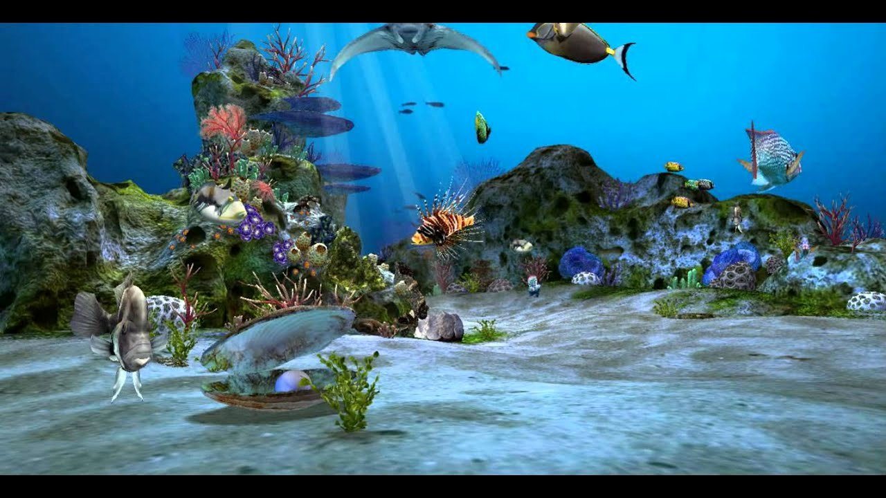 3d Backgrounds Fish Tank Inspirational Amazingly Beautiful 3d Aquarium Live Wallpaper Wallpaper
