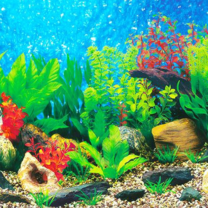 3d Backgrounds Fish Tank Unique Aquarium Background Paper Hd Picture 3d Three Dimensional