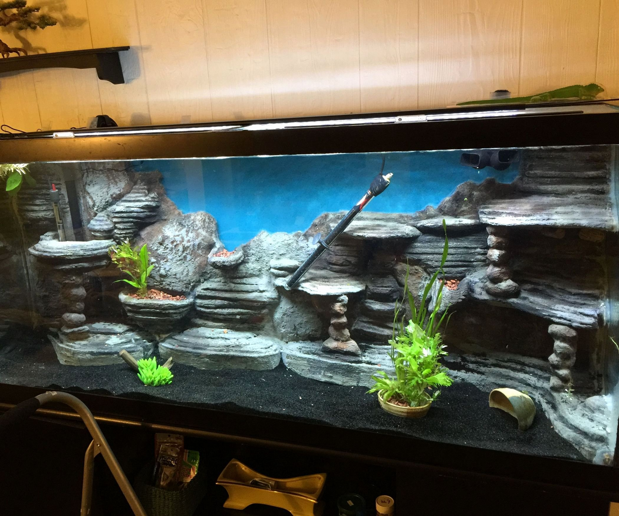 3d Backgrounds Fish Tank Unique Make A 3d Aquarium Background 14 Steps with