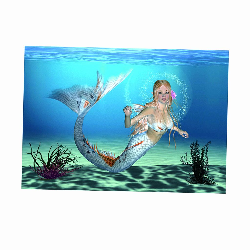 3d Fish Tank Wallpaper Beautiful 3d Aquarium Fish Tank Background Poster Mermaid Picture