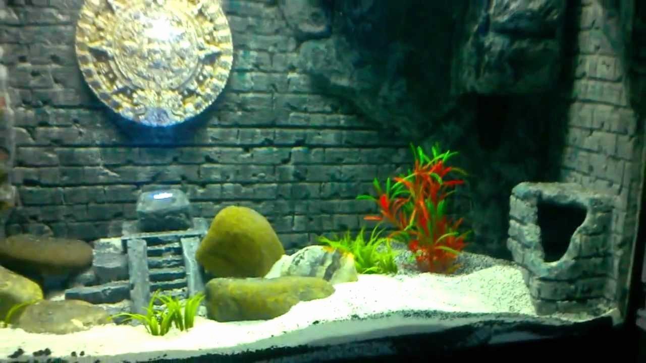 "3d Fish Tank Wallpaper Beautiful Diy ""aztec Mayan"" themed 3d Aquarium Background"