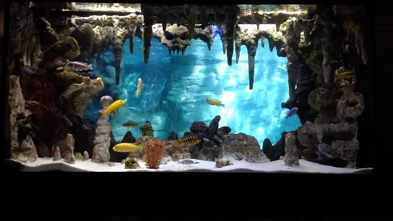 3d Fish Tank Wallpaper Elegant Diy Underwater Cavern Aquarium with 3d Background