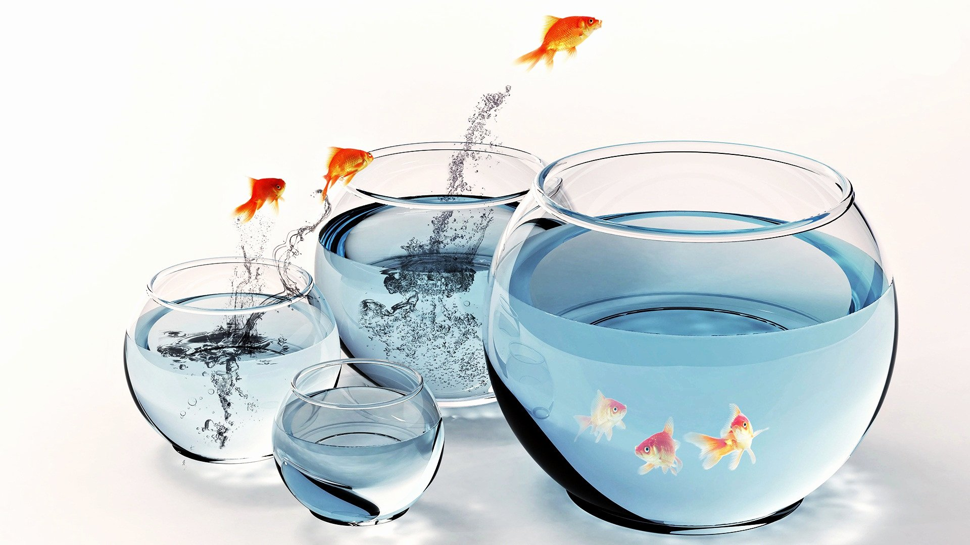 3d Fish Tank Wallpaper Inspirational Desktop Hd 3d Fish Aquarium Wallpaper Free Download