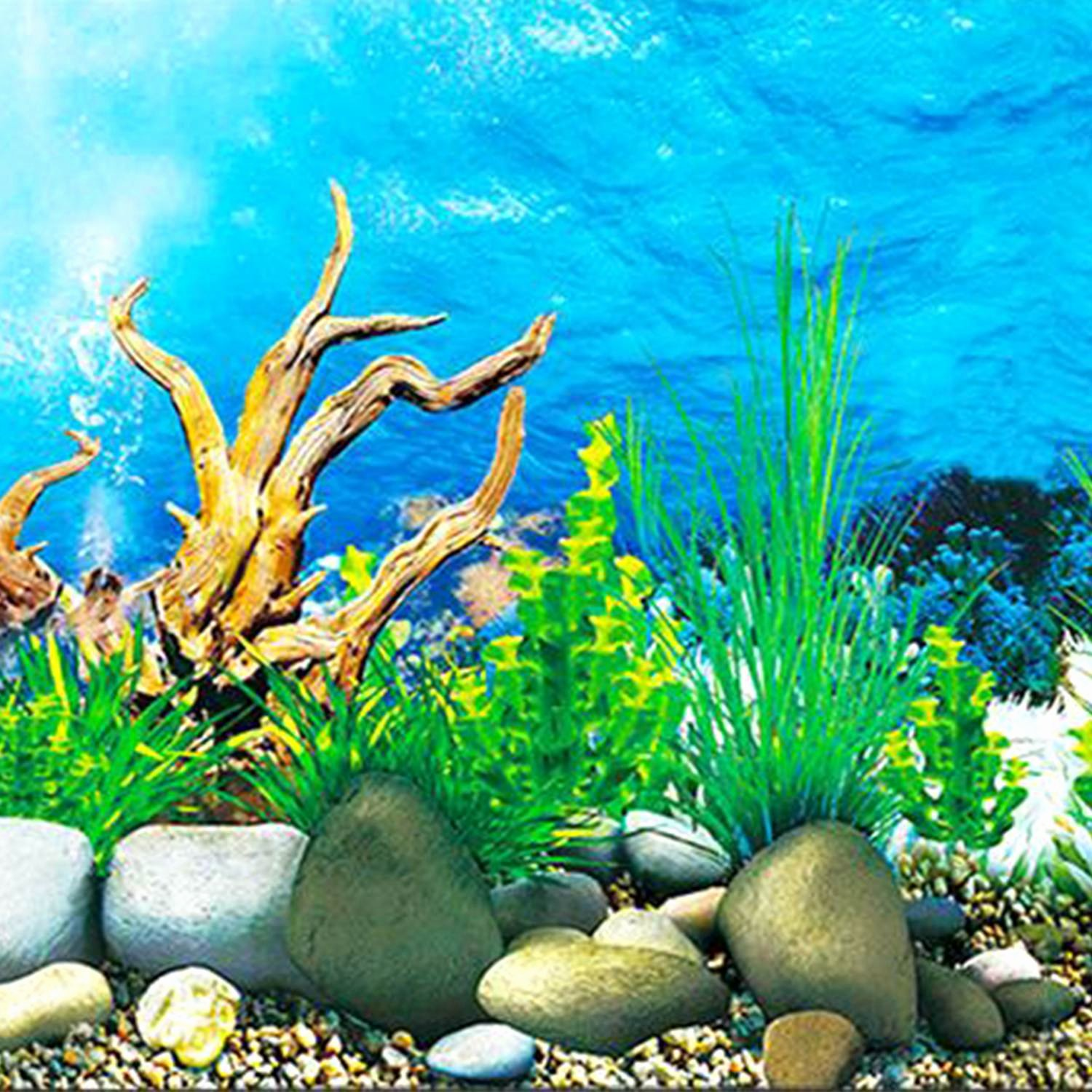 3d Fish Tank Wallpaper Inspirational Ialj top Aquarium Background Paper Hd Picture 3d Three