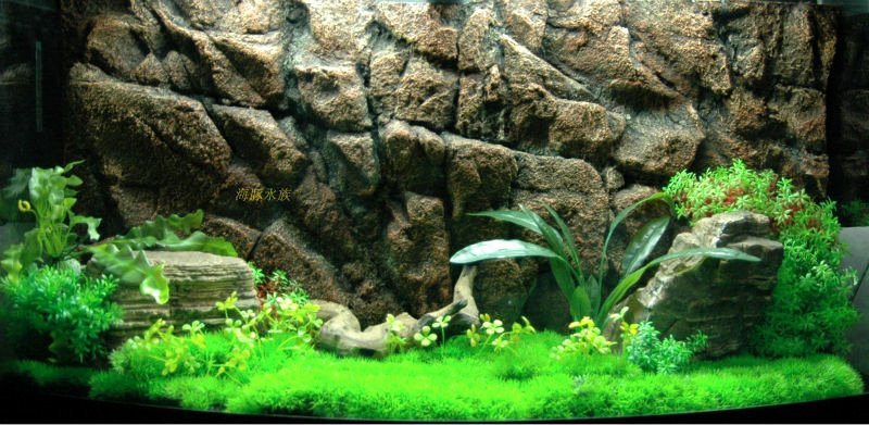 3d Fish Tank Wallpaper Lovely Aquarium 3d Background for Fish Tank Buy Aquarium 3d