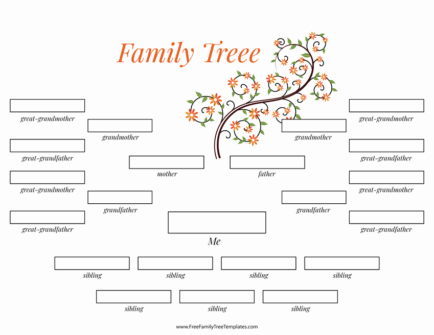 4 Generation Family Tree Template Lovely 4 Generation Family Tree Many Siblings Template – Free