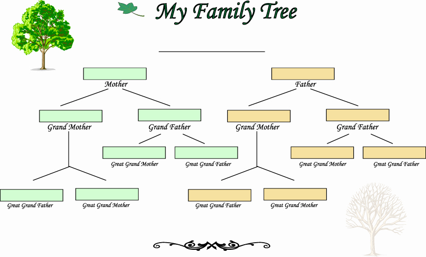 4 Generation Family Tree Template Luxury Blank Family Tree Template