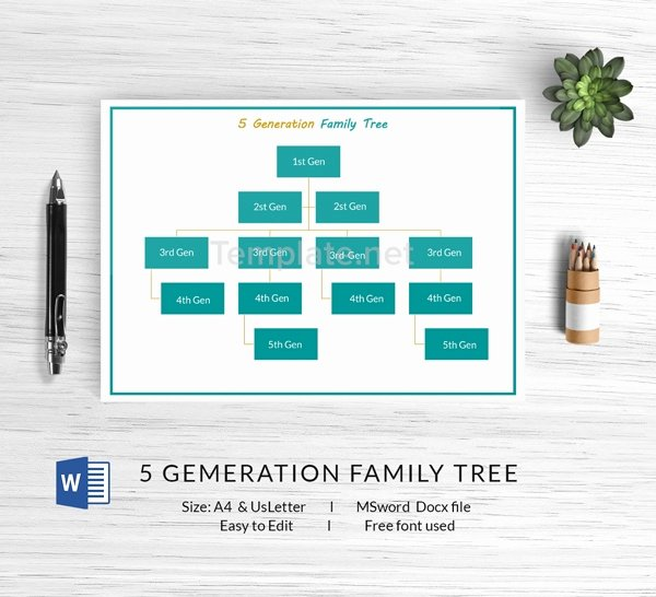 5 Generation Family Tree Beautiful 13 Free Family Tree Templates Blank Chart Printable