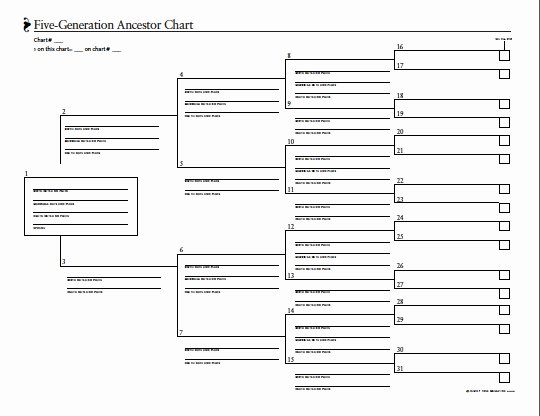5 Generation Family Tree Fresh 5 Best Of Fillable Ancestry Charts Blank Family