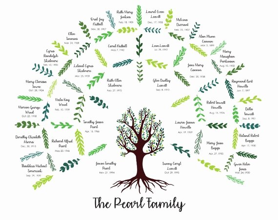 5 Generation Family Tree Fresh Custom Family Tree Four Generation Digital File Only