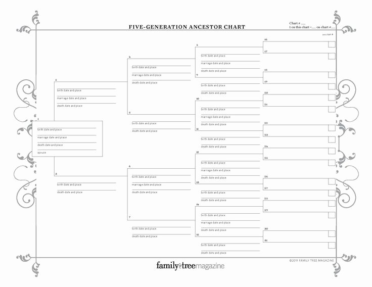 5 Generation Family Tree Inspirational Basic Genealogy forms Traditional 5 Generation Ancestor