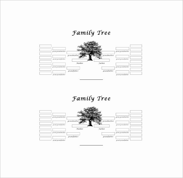 5 Generation Family Tree Inspirational Five Generation Family Tree Template – 11 Free Word
