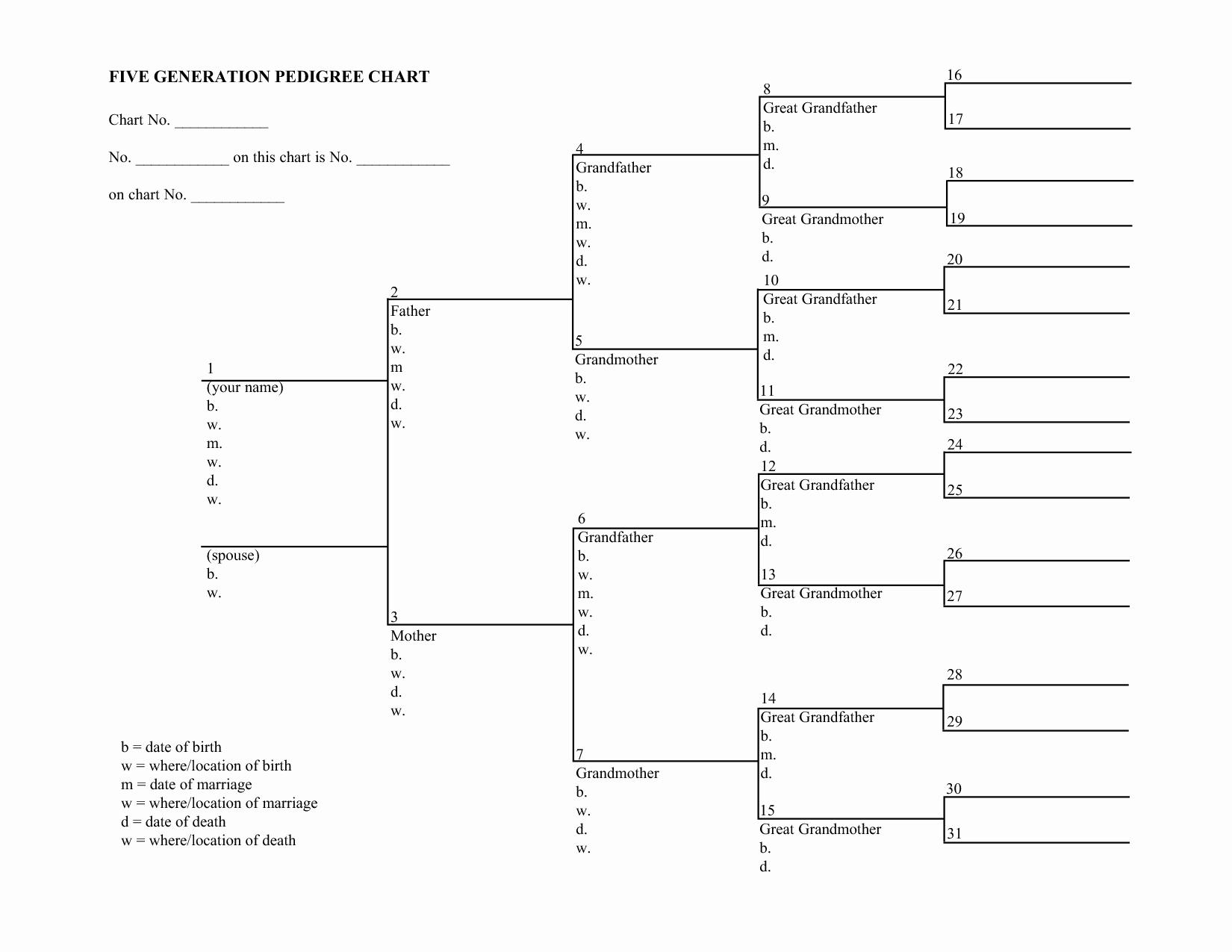 5 Generation Family Tree Unique Blank Family Tree Charts
