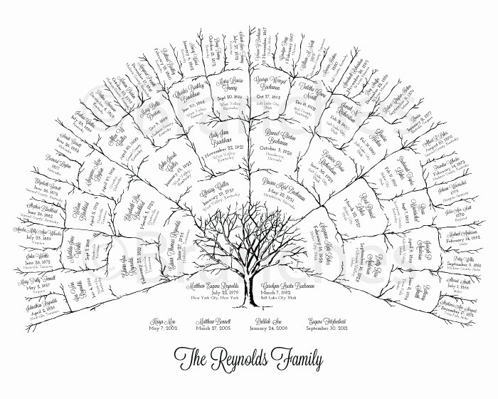 5 Generation Family Tree Unique Personalized 5 Generation Ancestral Family Tree Fan Chart