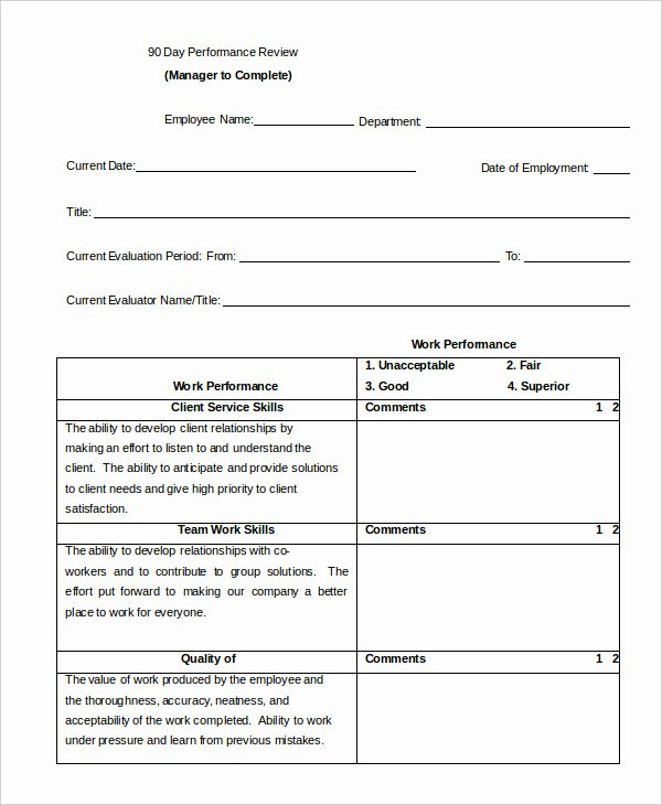 90 Day Evaluation forms Awesome Performance Review Example 9 Free Word Excel Pdf