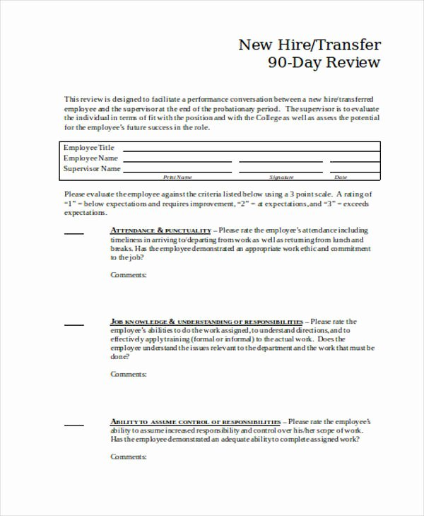 90 Day Evaluation forms Unique 25 Review forms In Word