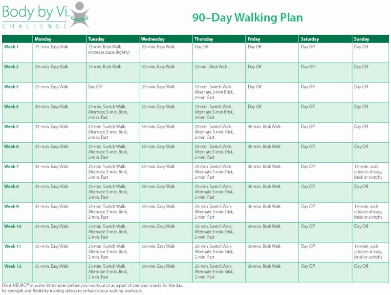 90 Day Workout Plan Best Of 9 90 Day Workout Plan Examples Pdf