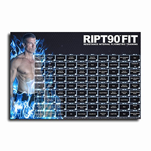90 Day Workout Plan Fresh Ript90 Fit 90 Day Workout Program with 12 1 Exercise
