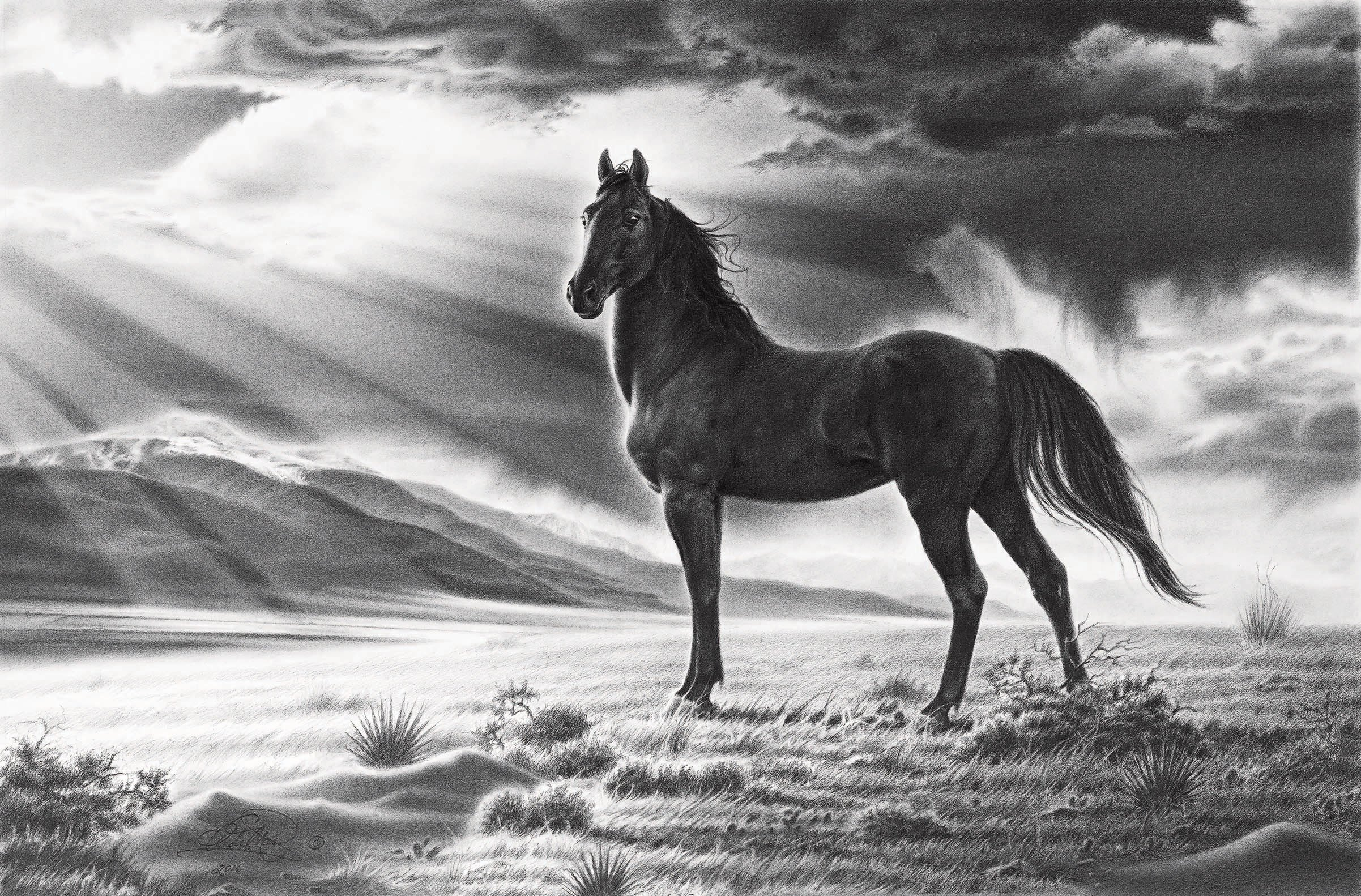 the graphite art of andy mast