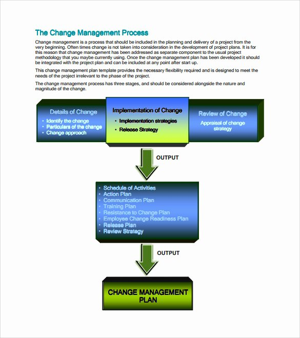 Action Plan Template for Managers Beautiful Sample Management Action Plan Template 9 Documents In