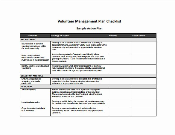 Action Plan Template for Managers Luxury Sample Management Action Plan Template 9 Documents In