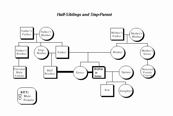 Adoption Family Tree Template Awesome Putting Those Half Siblings On A Family Tree