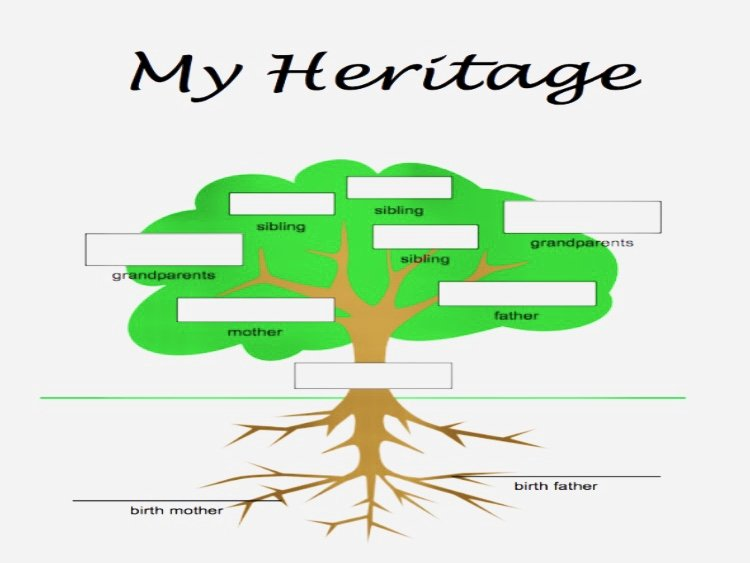 Adoption Family Tree Template Best Of My Adoption Family Tree – Melissa Ohden