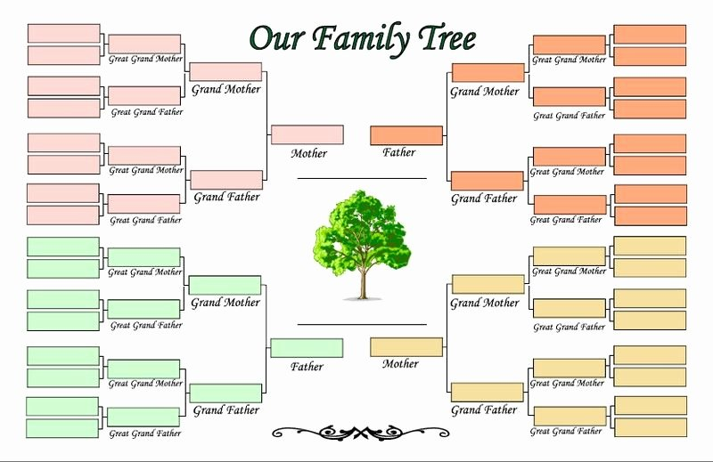 Adoption Family Tree Template Inspirational 5 Generation Family Tree Template Family Tree Template