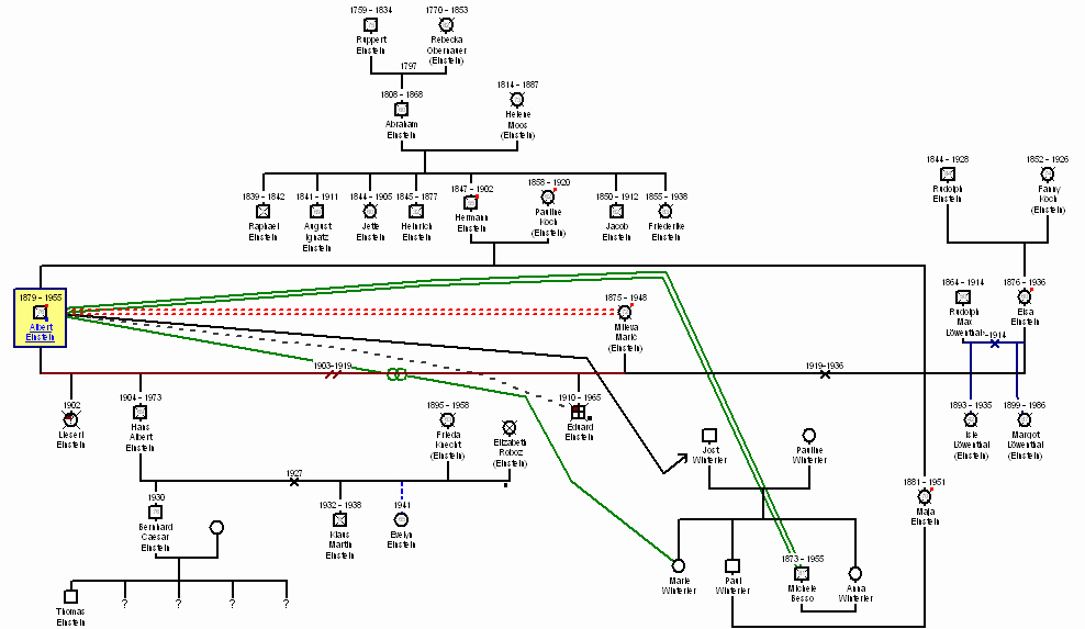 Adoption Family Tree Template Unique Genogram Examples Genopro