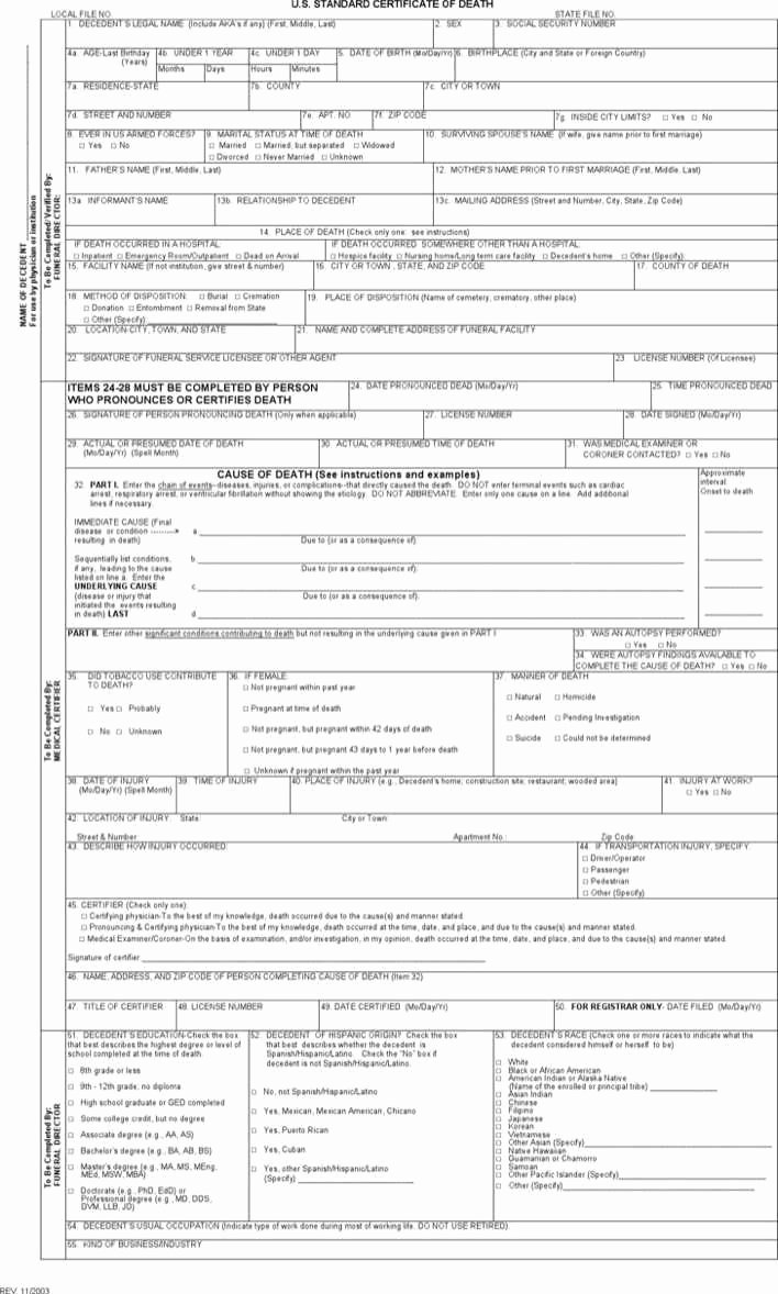 After Death Instructions Template Beautiful Download Death Certificate form for Free