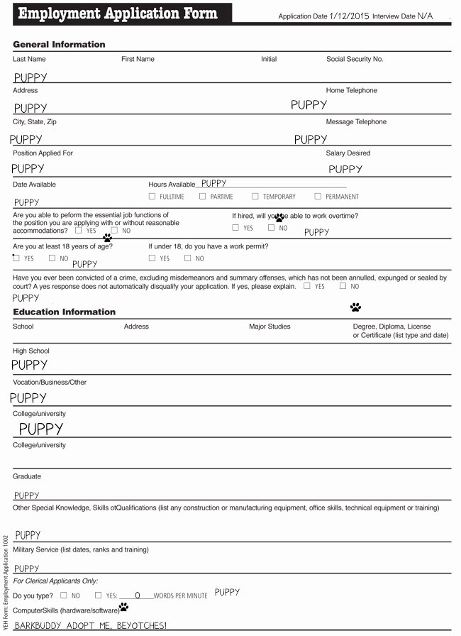 Application for Nanny Position Luxury We Found 5 Job Applications for Paris Hilton S New Dog