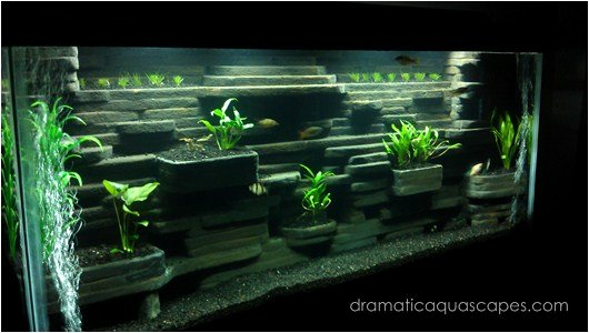 Aquarium Backgrounds 55 Gallon Elegant Dramatic Aquascapes Diy Aquarium Background Aaron