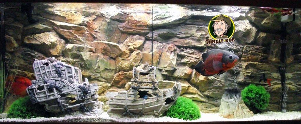Aquarium Backgrounds 55 Gallon Inspirational Jungle Bob 3d Aquarium Background 48x21 Inch for 55 75