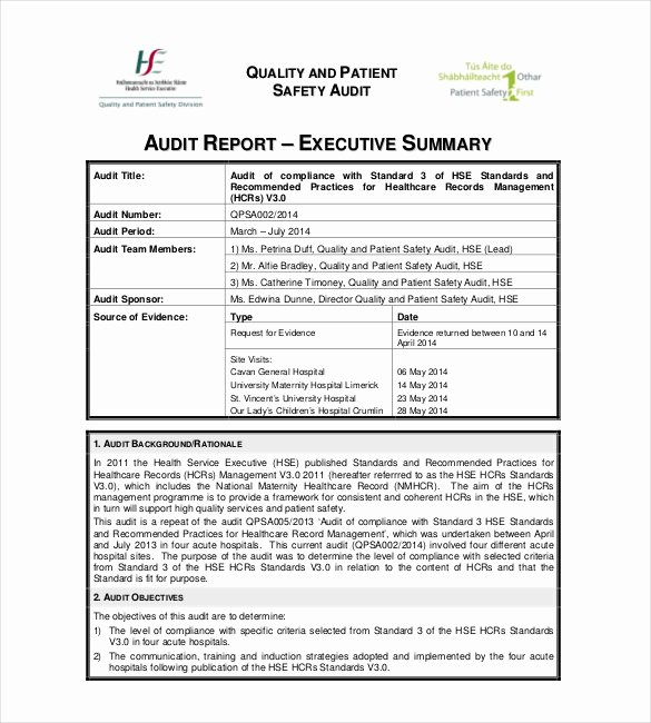 Audit Report Template Word Luxury Summary Report Template 13 Free Pdf Apple Pages