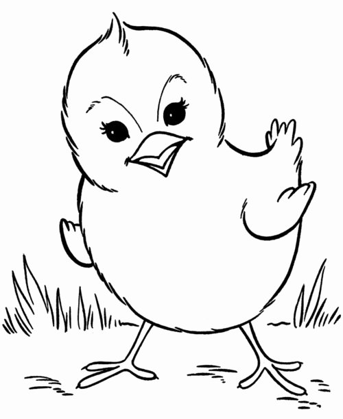 Baby Animals Colouring Pictures Awesome Free Coloring Pages Baby Farm Animals Coloring Pages for